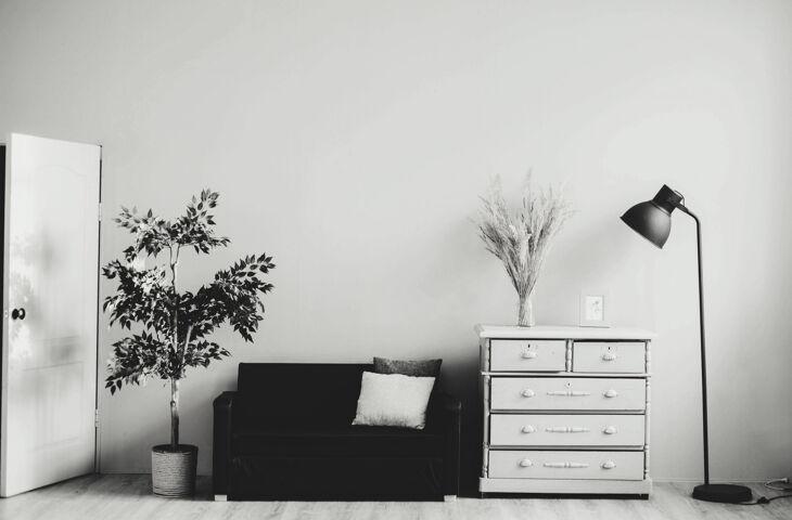 móveis organizados em um student housing